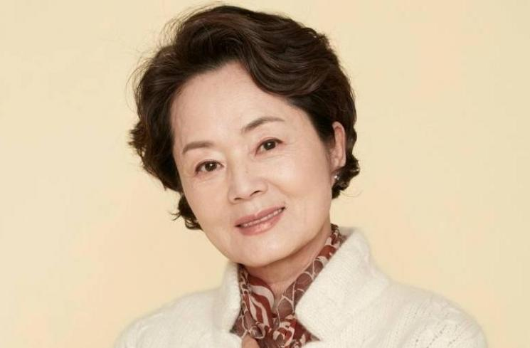 Kim Young Ae (Allkpop)